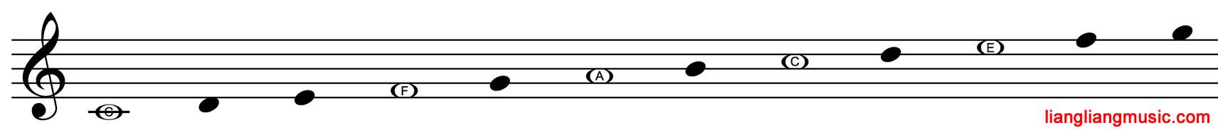 高音谱号通过FACE找其他音
